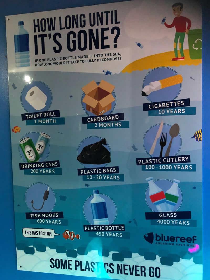 Plastic free advice from Horsebridge Vets
